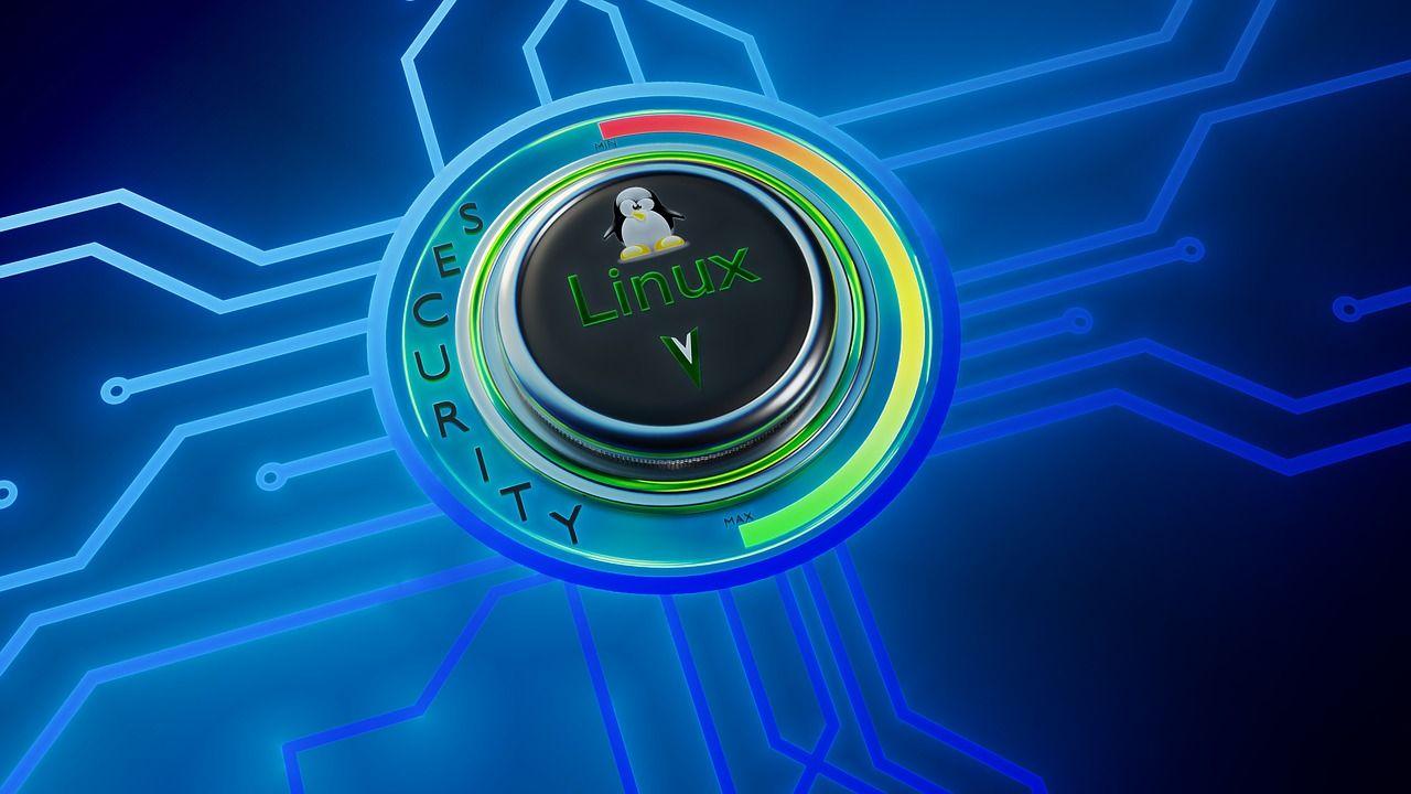 Instalare și prezentare Linux Mint 9 Isadora LTS